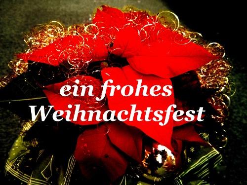 ein_frohes_weihnachtsfest_500